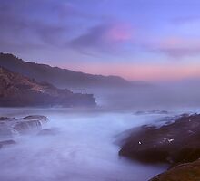 Sea Lion Cave, Point Lobos, Carmel California by Maria Draper