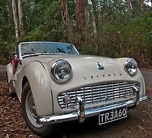 Triumph TR3 by Tom Newman