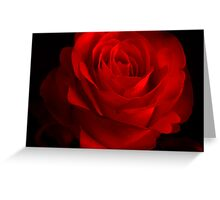 One Rose Red. Greeting Card