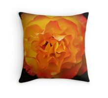 Two tone Rose - Spring. Oct. 2009 Throw Pillow