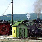Steam Engine 3254 Coming into Train Yard by Susan Savad