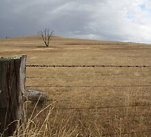 fence and pending storm by artrate