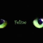 Feline by saleire