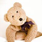 Happy Teddy Bear by daniwillis