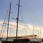 A Superb Sailing Vessel by sstarlightss