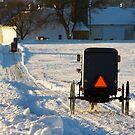 Horse and Buggies in the Snow by Mark Van Scyoc