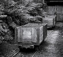 Coal Carts  by Christine  Wilson Photography