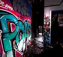 Urban art Sydney by damienlee