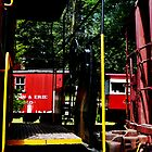 Morristown & Erie Caboose by Susan Savad