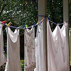 Laundry  by porksofpig
