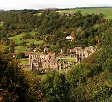 Rievaulx Abbey - North Yorkshire by Kat Simmons