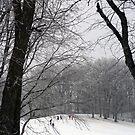 Sledding At Petrifying Springs Park by kkphoto1