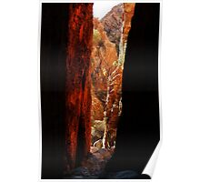 Standley Chasm,McDonell Ranges,N.T. Poster