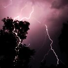 Lightning everywhere- Kalgoorlie, Western Australia by Ashli Zis