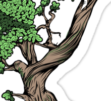 Thinking Bonsai Sticker