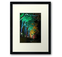 Kings Park Lights Framed Print