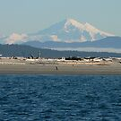 Mount Baker by Freedom