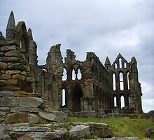 Whitby Abbey, Long View ~ Whitby, Yorkshire 2008 by Samantha Creary