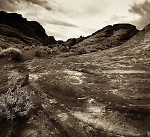 Valley of Fire V by Jesse J. McClear