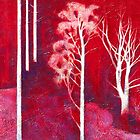 &quot;Ghost Forest&quot; (Huonbrook)  by Karyn Fendley