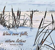 When Snow Falls, Nature Listens by Vickie Emms