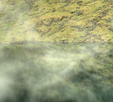 Aryan Mist by Jamie  Green