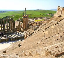 Theater at Dougga by Laurel Talabere