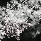 Just A Snowflake by alienfunk