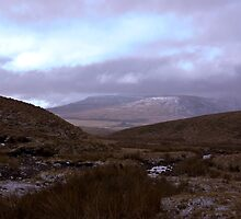 Whernside by Trevor Kersley