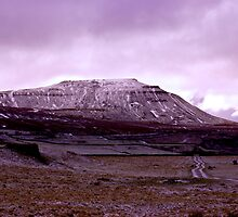 Ingleborough Fell by Trevor Kersley