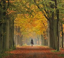 Riding out in the paradise of autumn by jchanders