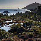 Muskeg ~ Ommaney Peak ~ Crow & Wooden Islands by DJ LeMay