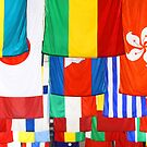 World Flags by snehit