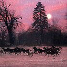 Moonlight Horses by pahit