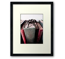 Pain the Spider on the Move Framed Print