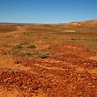 Red Gibber Plain,Oodnadatta Track by Joe Mortelliti