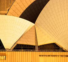 Golden Sails - Sydney Opera House by Mark Richards