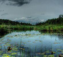 Bottomless Lake by Heather  Waller-Rivet  IPA