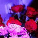 flowers by xxnatbxx