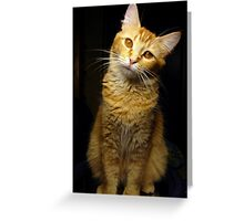 What are you talking about? Greeting Card