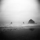 cannon beach . oregon by sara montour