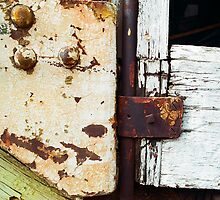 Trolley Door - Abstract Detail by Larry3