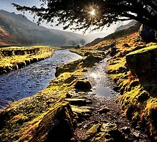 Pathway to Watendlath Tarn, Cumbria. UK by David Lewins