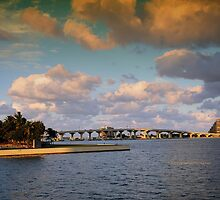 Scenes from Miami V by PJS15204