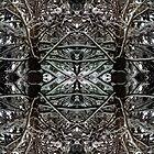 WInterscape Collage 1 by ZugArt