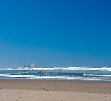 Oregon Coast beach scene by andrewm
