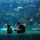Kids entranced at the Aquarium by iuchiatesoro