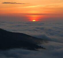 Sunrise, Shenandoah National Park by Stephen Vecchiotti