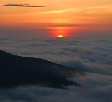 Sunrise, Shenandoah National Park by Stephen Vecchiotti