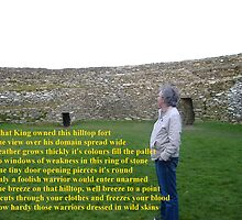 Grianan of Aileach by Gerry  Temple
